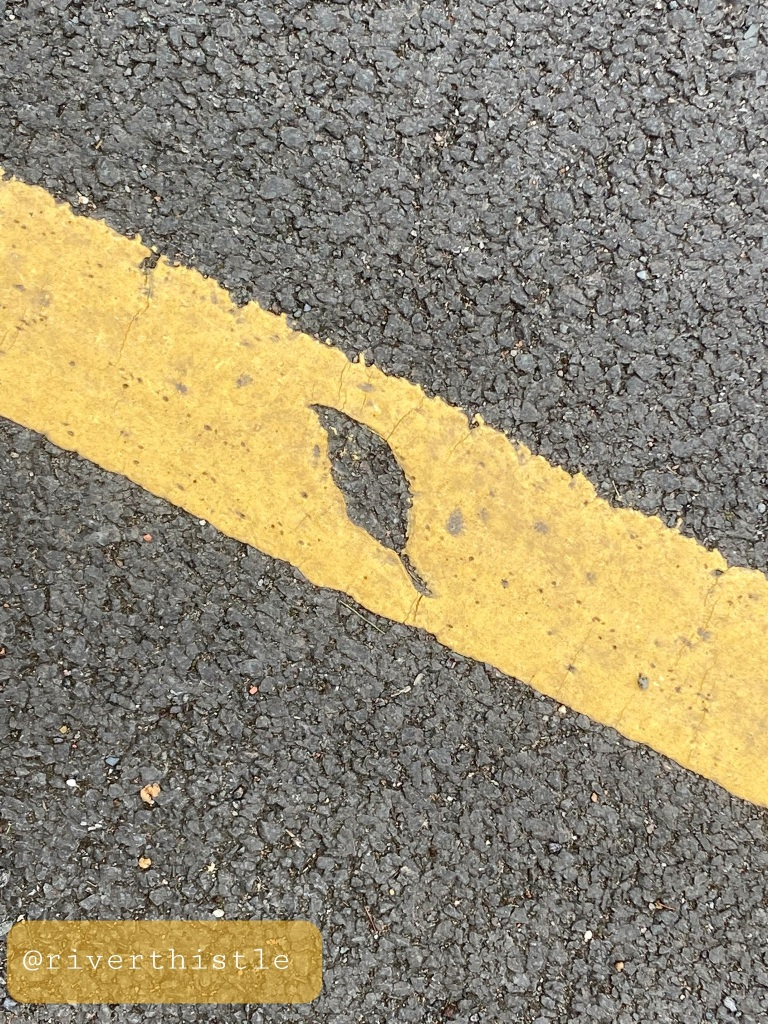 Photo of newly painted asphalt where it painted over a leaf leaving an impression. Photo by @riverthistle